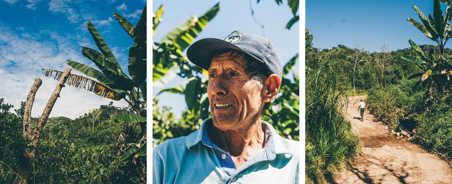 Portaits of farmer Baleriamo B'ordora Muñoz on his cacao agroforestry farm in Junín, Peru.