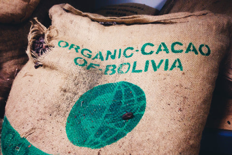 Organic cacao from the CIAAB Co-op in Bolivia