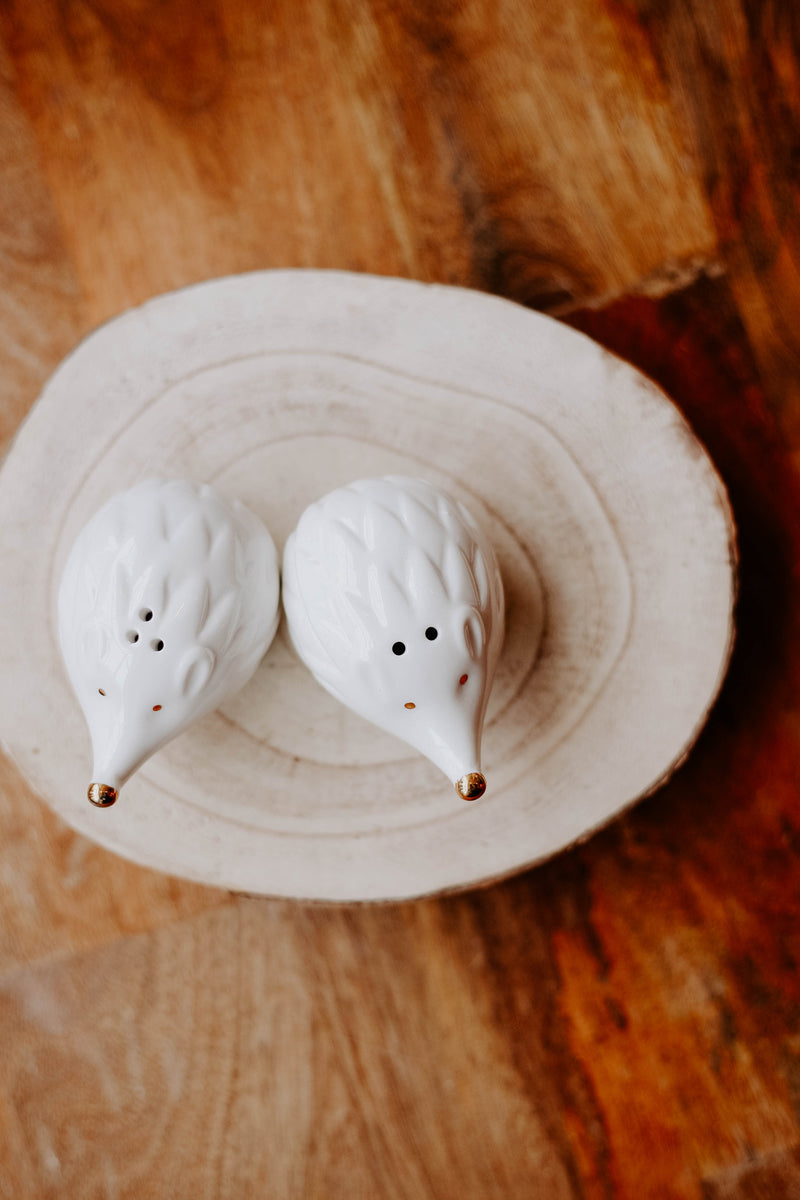 Hedgehog Salt & Pepper Set