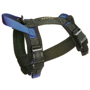 "Flyball Harness 3/4"" Webbing"