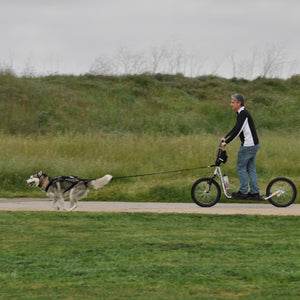 Deluxe Scooter Package (1-Dog with 2-Dog Option)