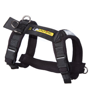 Urban Trail Adjustable Harness, Ready-To-Go Sizes!