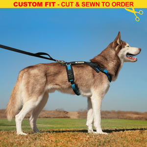 Urban Trail® Adjustable Harness (Half-Back/Shorty) - CUSTOM FIT - Cut & Sewn to Order