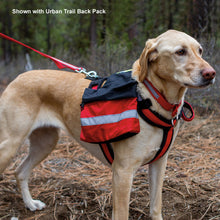 Load image into Gallery viewer, Urban Trail® Adjustable Harness, Ready-To-Go Sizes!