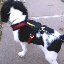 Load image into Gallery viewer, Urban Trail® Adjustable Harness (Half-Back / Shorty) - CUSTOM CRAFTED
