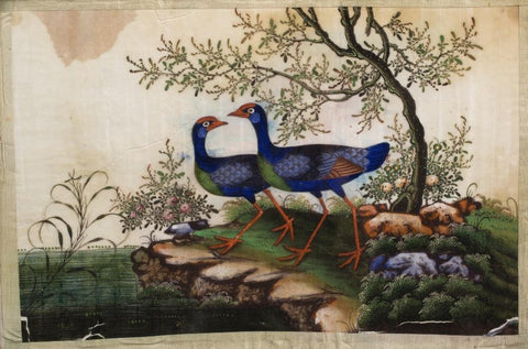 Watercolour Painting of Birds on Pith Paper - 19thC
