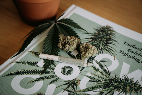 Weed and a magazine.