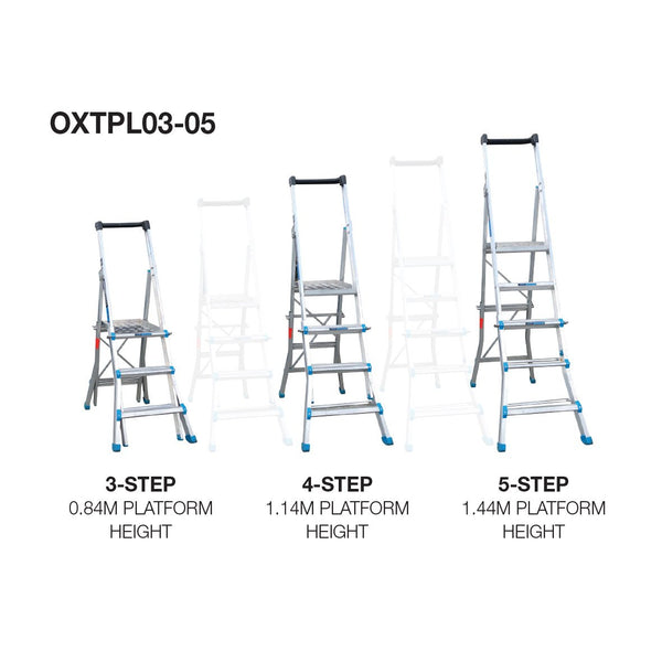 Ladder plus Work Platform