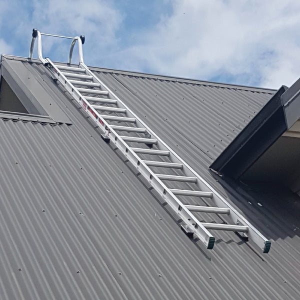 Roof ladder with hook