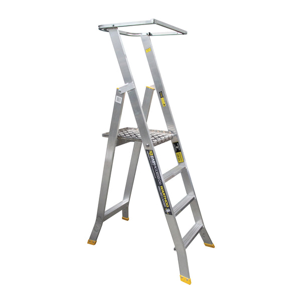 Warthog Ladder Accessory - Optional Full Surround Handrail