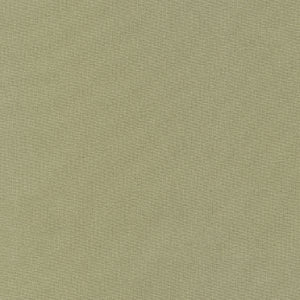 Kona Cotton - Herb, per half-yard