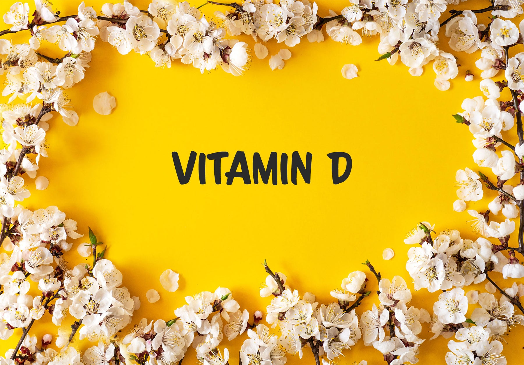 Did you know that Vitamin D isn't actually a vitamin?