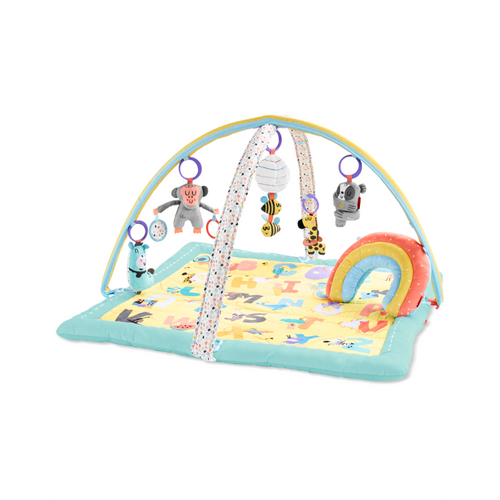 ABC & ME Activity Gym