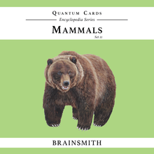 Load image into Gallery viewer, Mammals (Set II)