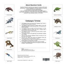 Load image into Gallery viewer, Reptiles