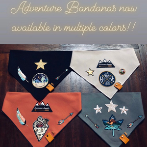 """Make Your Own Adventure""-Adjustable Pet Bandana"