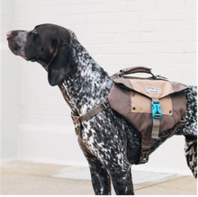 Load image into Gallery viewer, Denver Urban Pack Lightweight Urban Hiking Backpack for Dogs