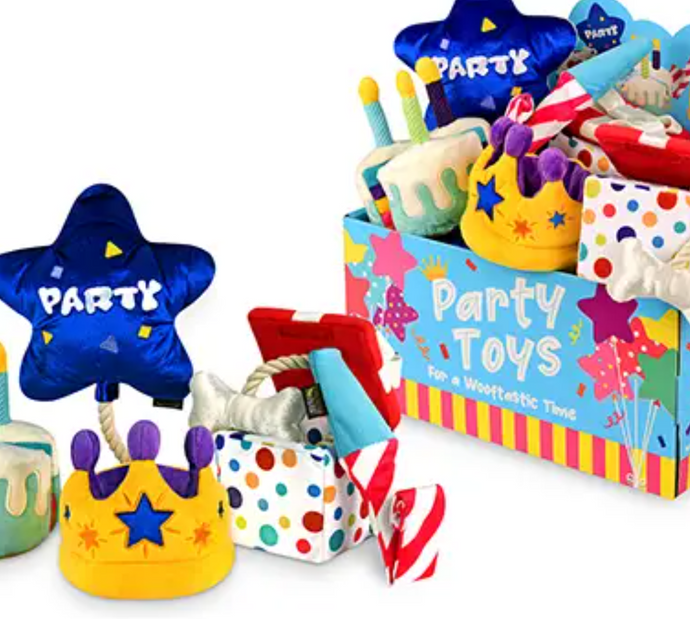 Party Time Toy Set