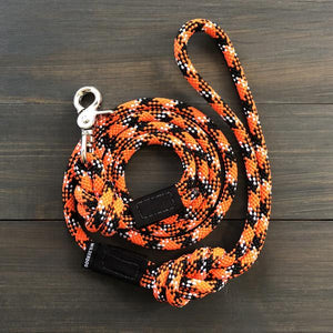 Wildcat Quick Clip Leash (5 ft)