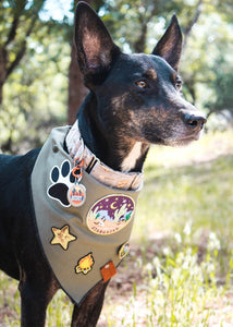 Adventure Banadana - Adjustable Pet Bandana