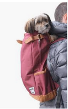 Load image into Gallery viewer, K9 Sport Sack URBAN