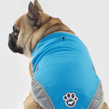 Load image into Gallery viewer, Chill Seeker Cooling Vest