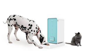 Petkit 'Element' Wi-Fi Enabled Smart Pet Food Container Feeder