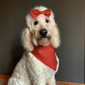 Honey's Collection - Adjustable Pet Bandana