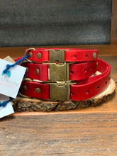 Load image into Gallery viewer, Rural Roots-Hand Crafted Leather Adjustable Collar
