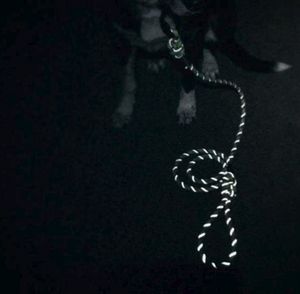 Islander Reflective Leash