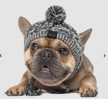 Load image into Gallery viewer, Polar Pom Pom Hat