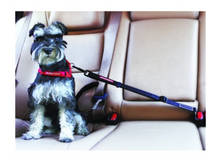 Load image into Gallery viewer, Click & Adjust Dog Car Restraint by EzyDog