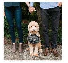 Load image into Gallery viewer, Pet Wedding Announcement Chalkboard
