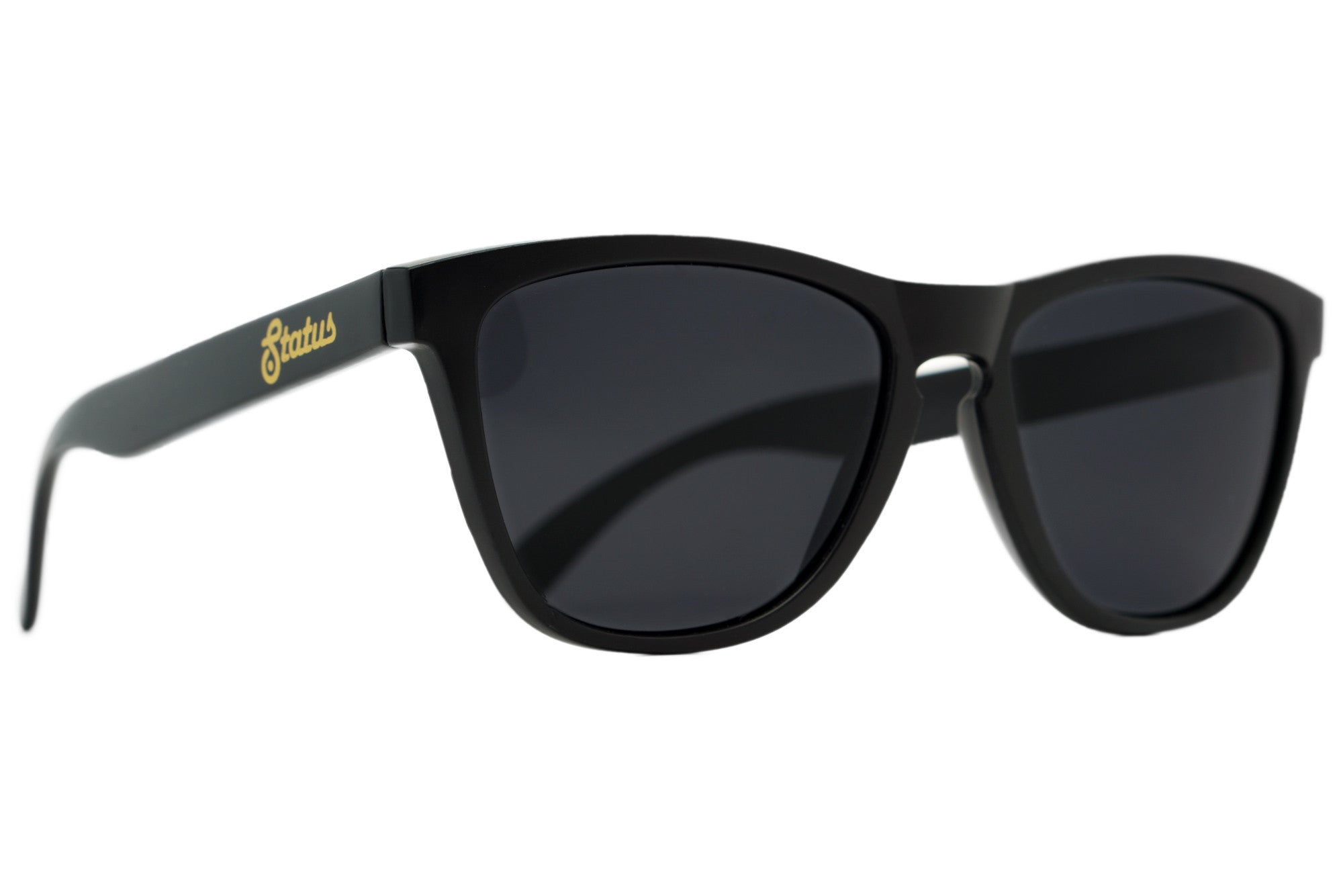 Image result for solid black shades