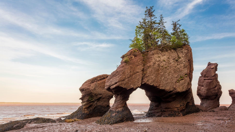 NEW BRUNSWICK COAST IN 10 DAYS