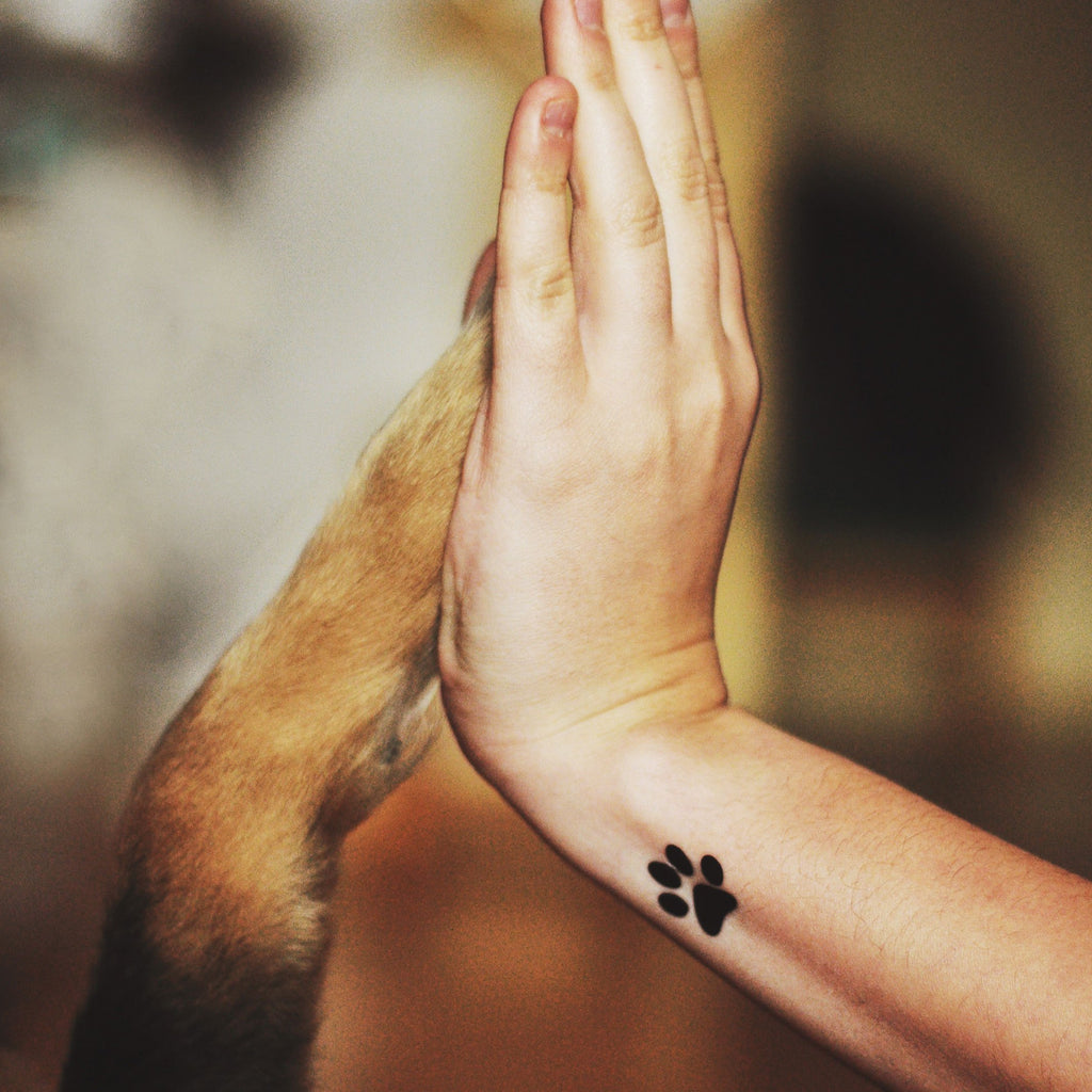 fake small animal paw animal temporary tattoo sticker design idea on wrist