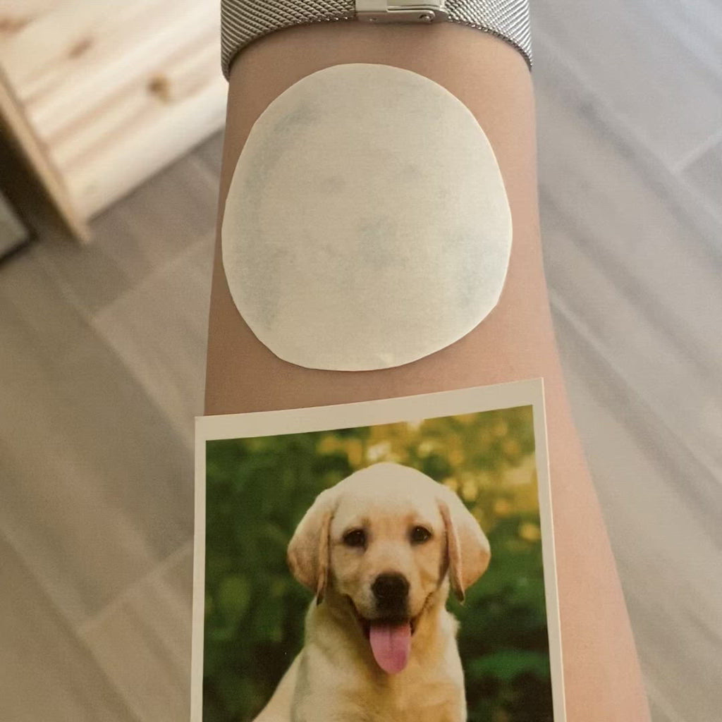 OhMyTat - fake small custom dog pet temporary tattoo sticker dashed dotted circle effect style design idea on wrist arm hand
