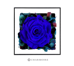 Charmoire Floral - Blue (Single)