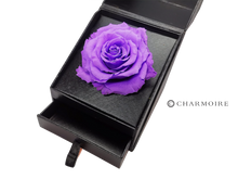 Load image into Gallery viewer, Charmoire Classic - Purple