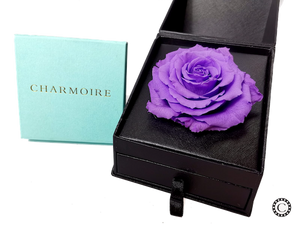Charmoire Classic - Purple Rose With Locket