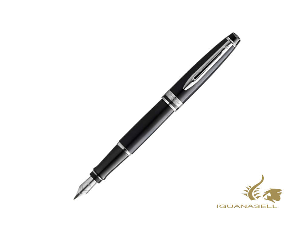 Waterman Expert CT Füllfederhalter, Messing, Palladium, Schwarz, 2099250