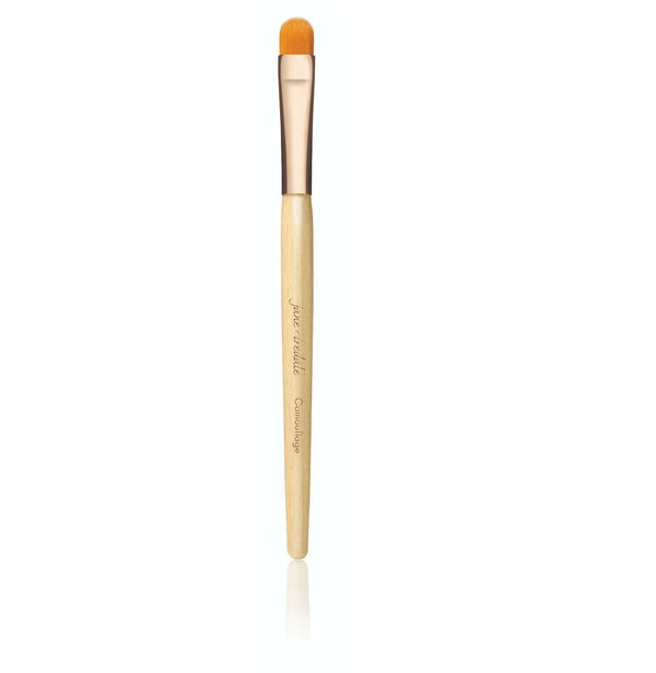 Jane Iredale Camouflage Brush纖維遮瑕掃 Skincare護膚產品 JANE IREDALE