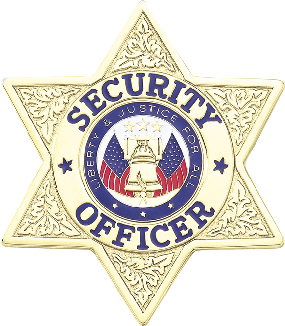 A7317 Security Officer 6 Point Star Badge