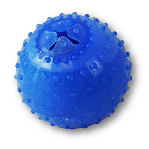 Arctic Freeze Ball Dog Toy Blue