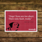 Dog Quote Cards - Set of 6