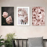 Peonies Rose and Together Poster