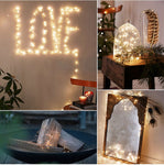 Holiday Fairy String Lights