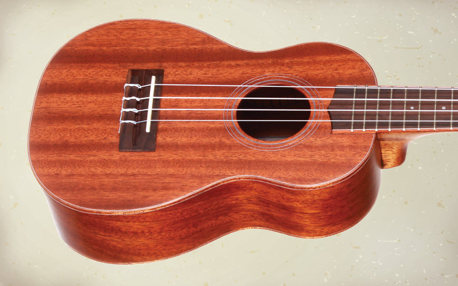 Teton TT20 Solid Top Tenor Ukulele