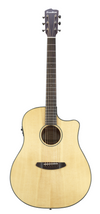 Breedlove Discovery Dreadnought Acoustic Electric Guitar
