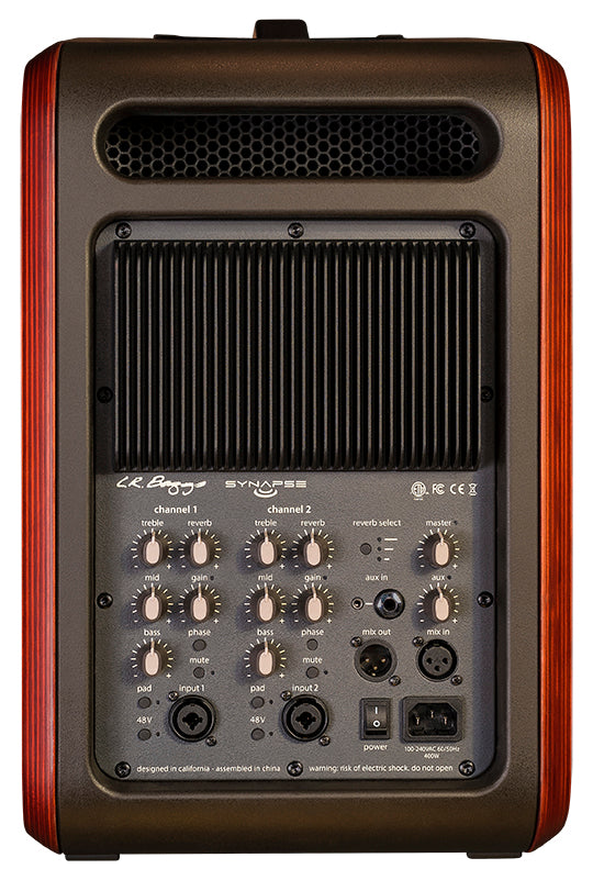 LR Baggs Synapse 2-Channel Personal PA System